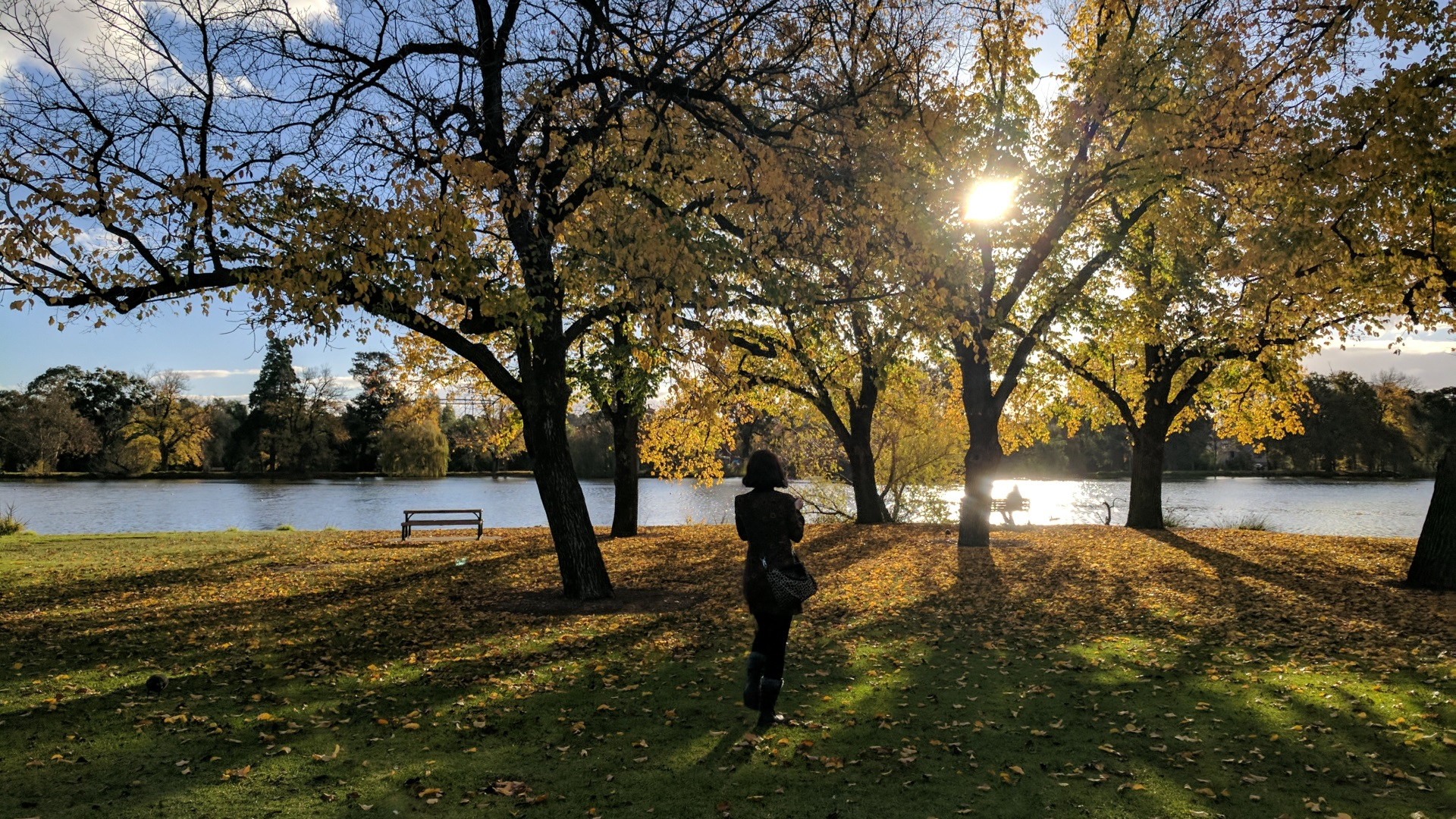 Lake Weeroona Autumn