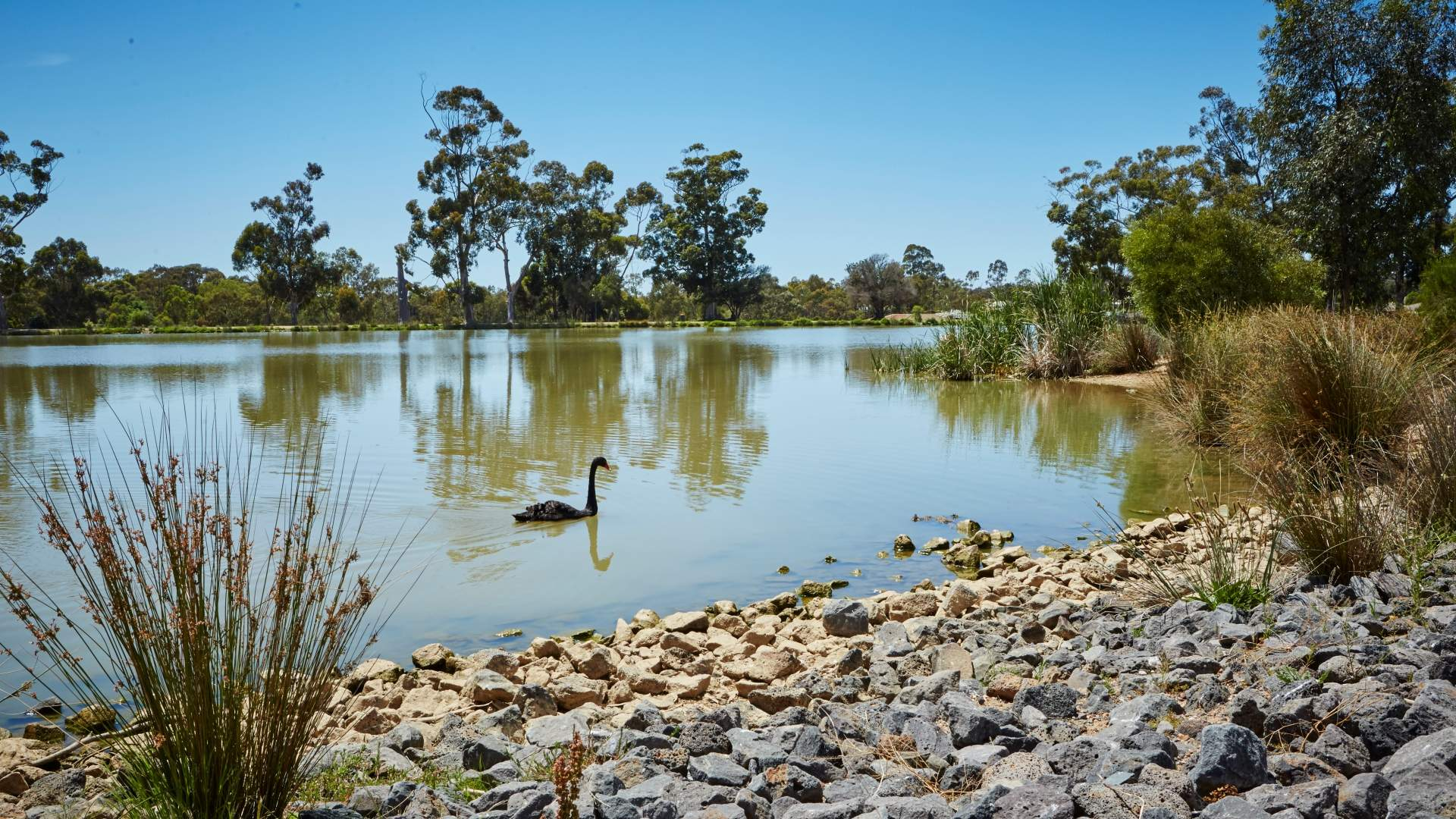 Eaglehawk Lake Neangar