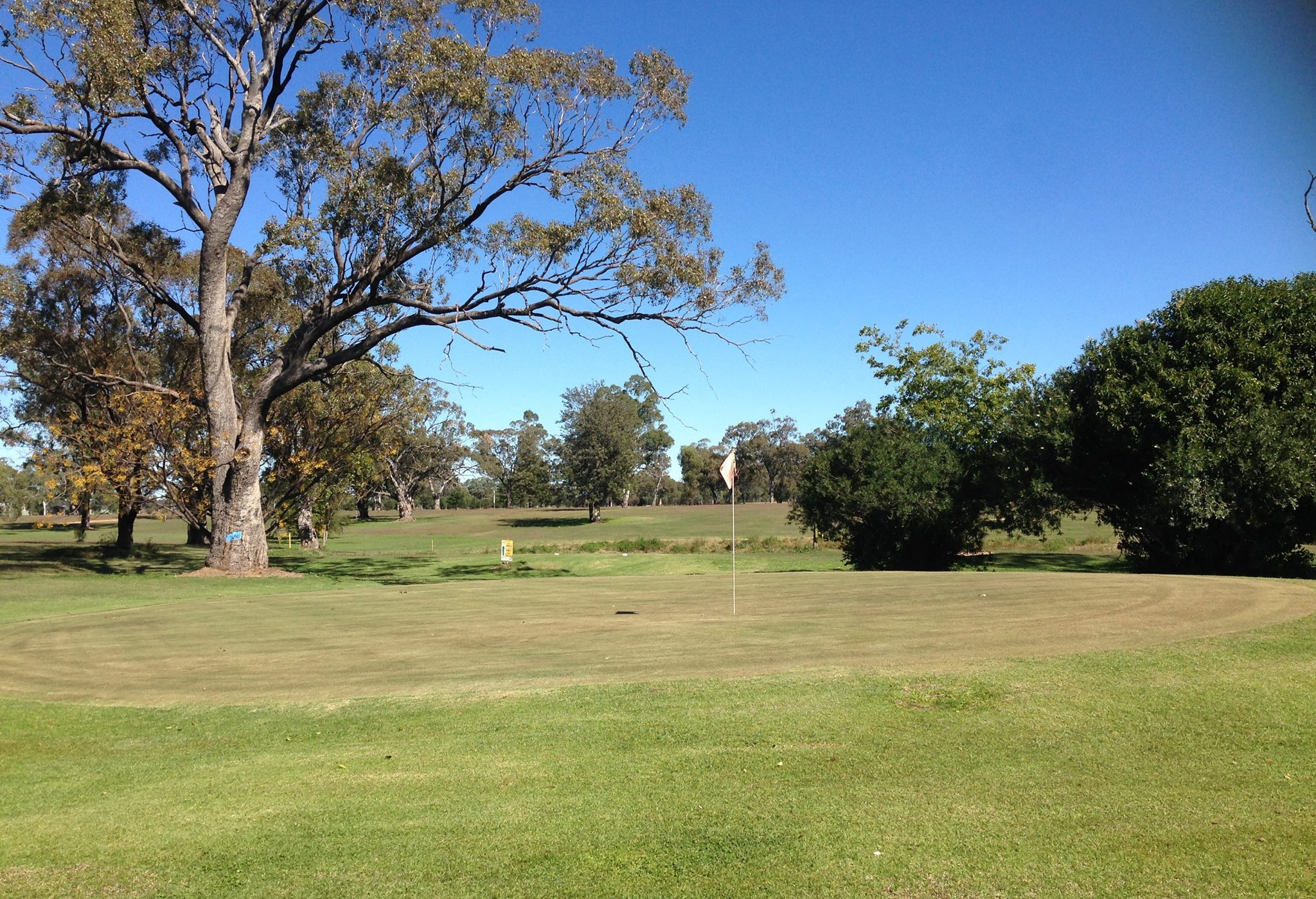 Korong Vale Golf Course