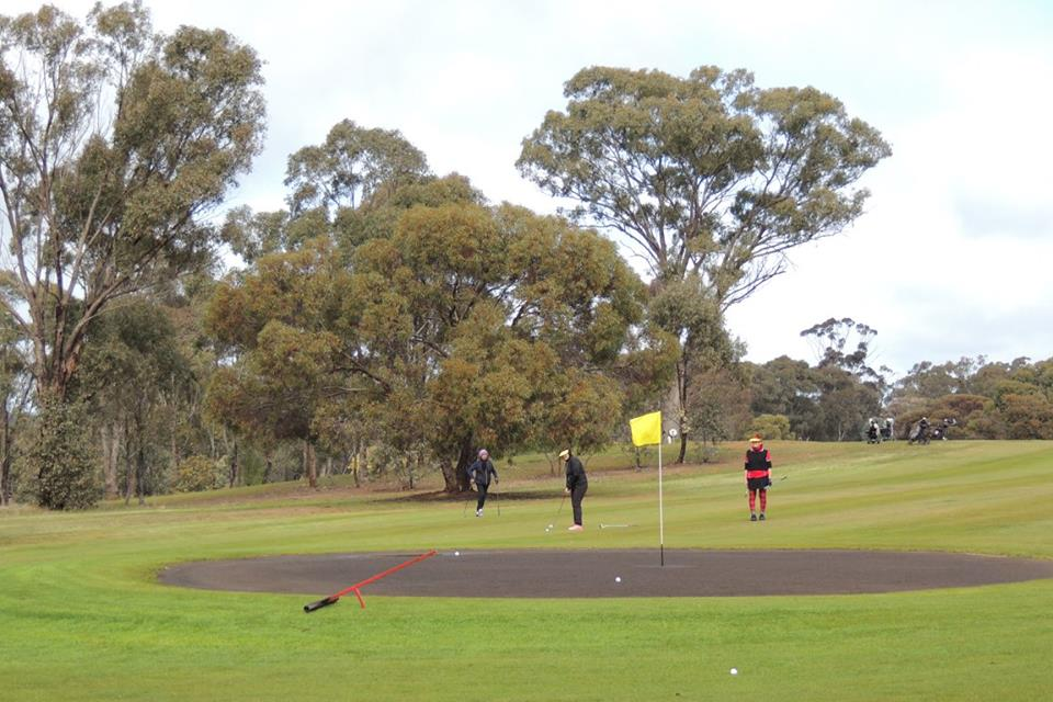 Wedderburn Golf Tournament