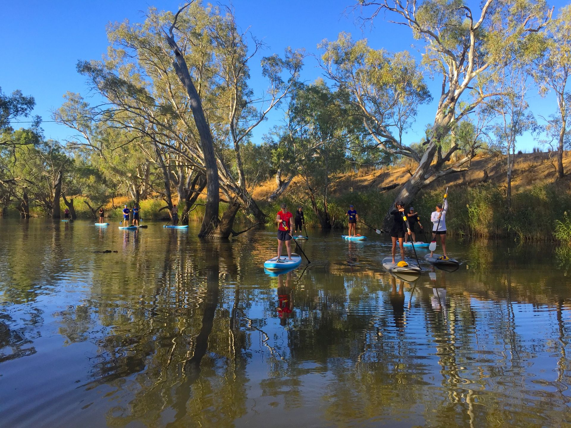 Stand up Paddleboarding Guided Tour on the Loddon River