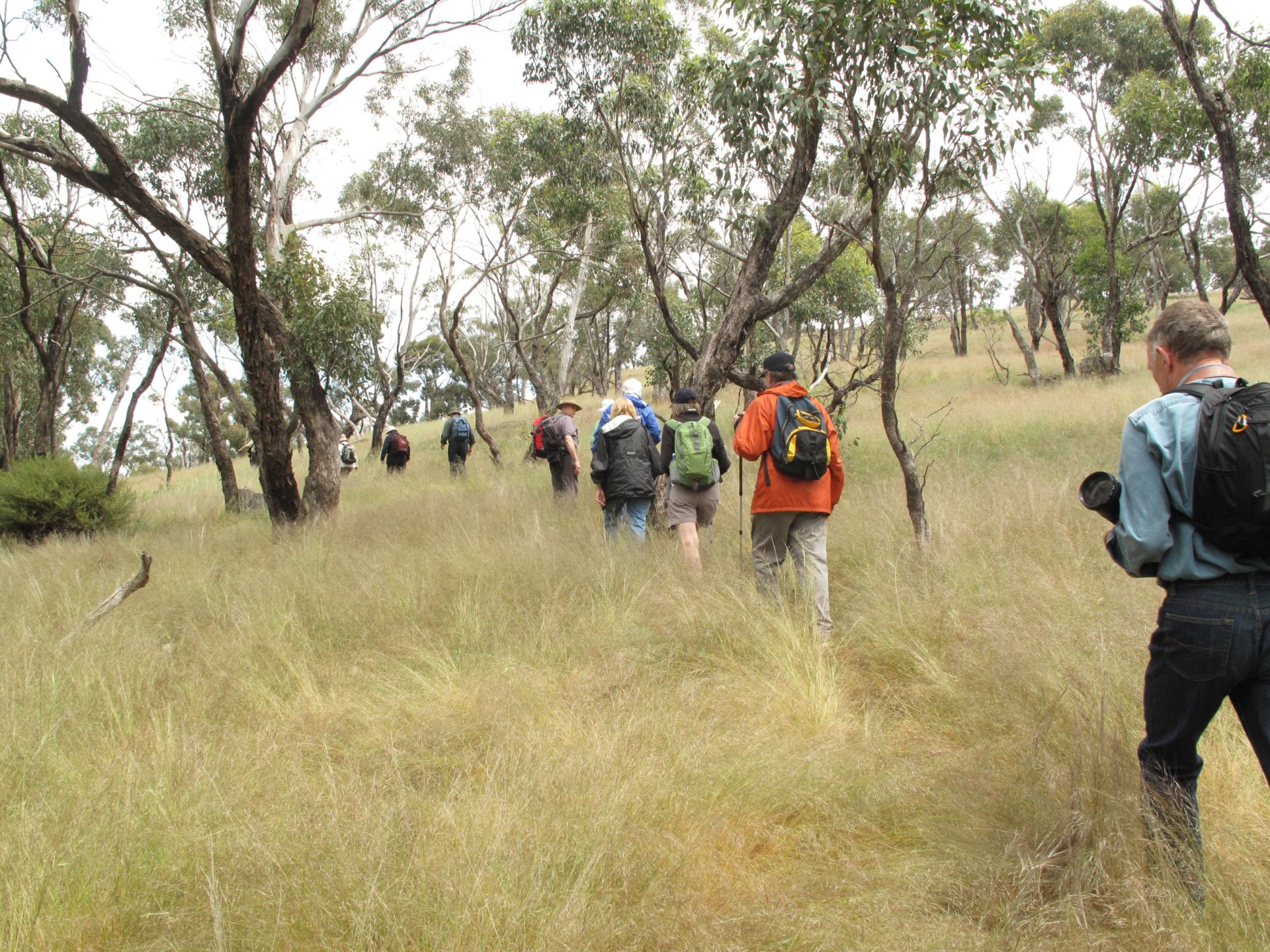 Nardoo Hills Reserve Guided Trip