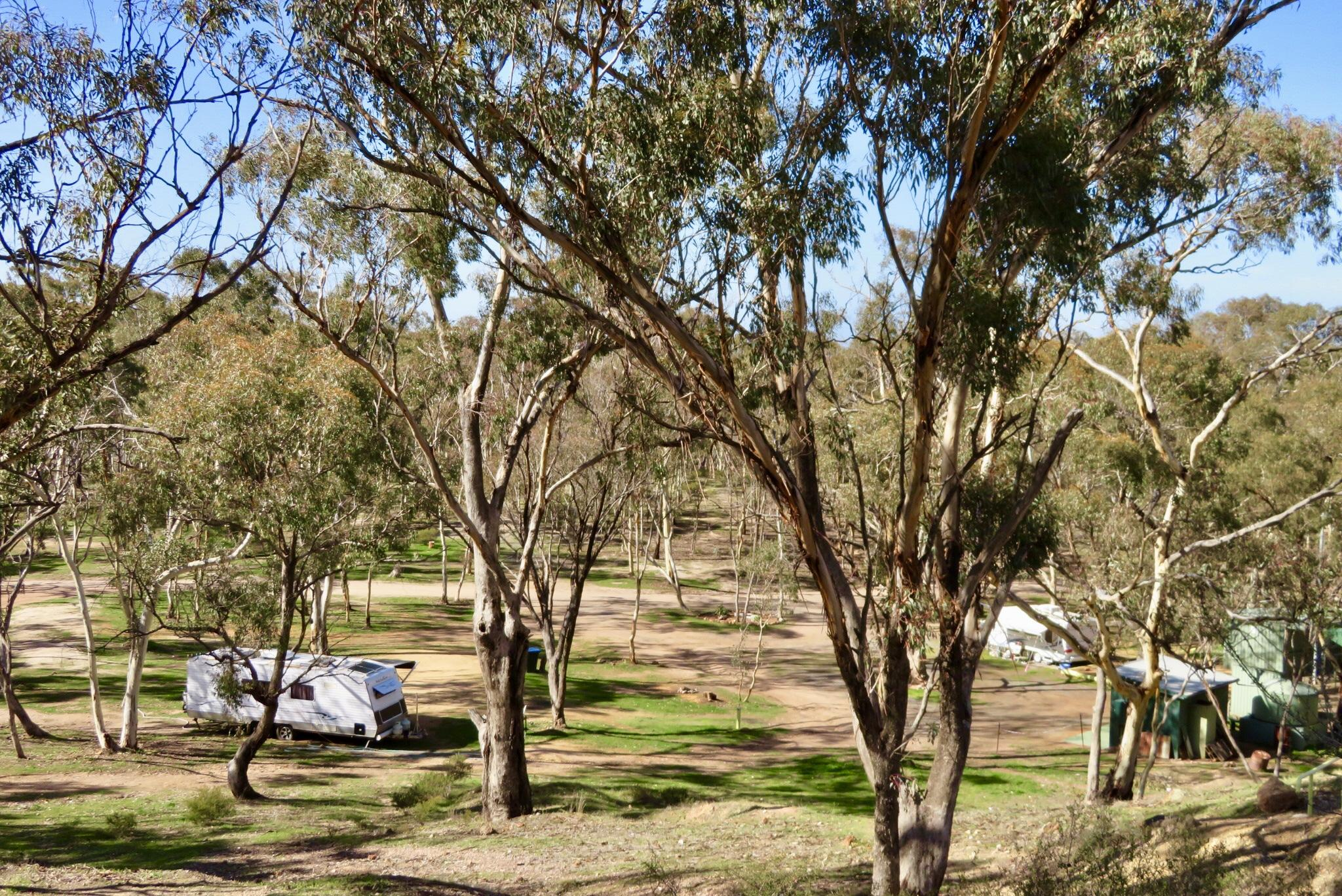 Hard Hill Tourist Reserve camping